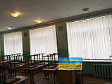 Жалюзи вертикальные в офис, квартиру на балкон, фото 3