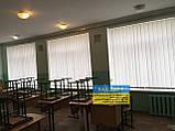 Жалюзи вертикальные в офис, квартиру на балкон, фото 5