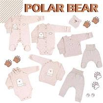 Колекція одягу VERES Polar bear зима