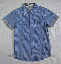 Детская рубашка для мальчика с коротким рукавом в бело-голубую клетку р. 140 см, 152 см (Glo-Story, Венгрия)