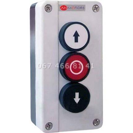 AN-Motors BS3 кнопочная станция, фото 2