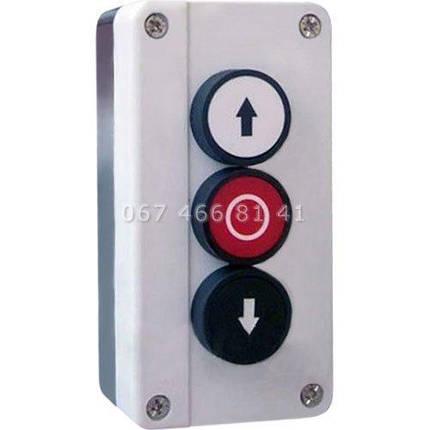 Hormann DT 03 кнопочный выключатель, фото 2