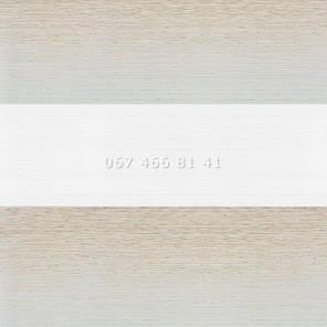 Тканевые ролеты Besta Mini День-Ночь BH BlackOut Silver 91, фото 2