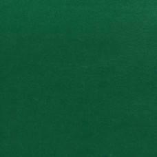 Набор Фетр мягкий, темно-зеленый, 21*30см (10л)
