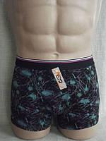 Боксеры шорты мужские стрейч салют С+3 Польша, фото 1