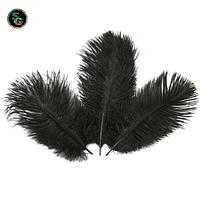 Перо страуса Черное 18-25см