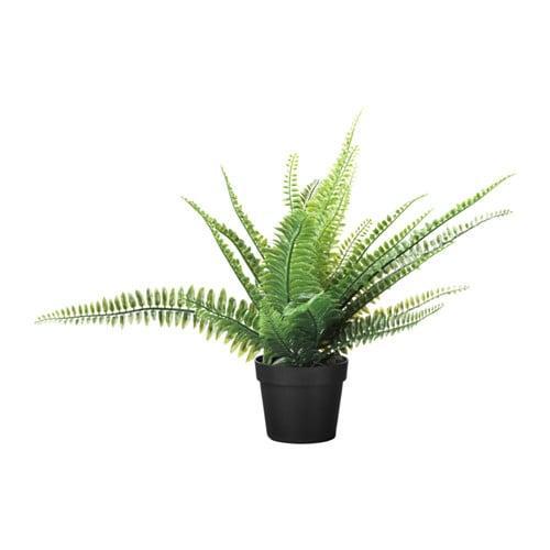 ИКЕА (IKEA) ФЕЙКА, 304.339.45, Искусственное растение в горшке, внутрь / снаружи папоротника, 9 см - ТОП ПРОДАЖ