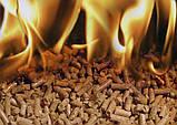 Ротационная печь на топливных пеллетах Mac Pan Phanton 4, фото 2