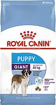 Сухой корм для щенков крупных пород Royal Canin Giant Puppy 15 кг