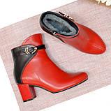 Черевики шкіряні туфлі на невисокому каблуці, колір червоний/чорний, фото 2