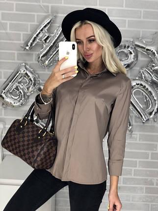 Женские блузки для офиса, фото 2