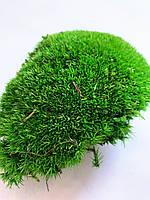 Мох стабилизированный  кочки 500 гр. зеленый, фото 1