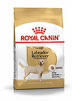 Royal Canin Labrador Retriever для собак 12кг  породы лабрадор ретривер