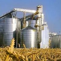Чем фермерам выгодно зерносушильное оборудование?