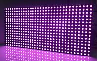 LED дисплей P10PO 16X32 модуль розовый для уличного использования (SMD)