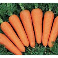 Семена Моркови  Витаминная  на вес