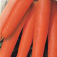 Семена моркови Артек