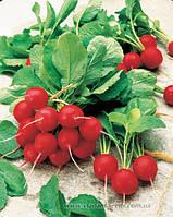 Семена редиса  Джолли (100 гр)
