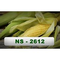 Семена кукурузы НС - 2612