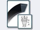 Ремінь вентиляторний 11х10-1280, фото 6