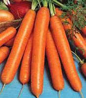 Семена моркови Амстердамська