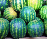 Семена арбуза Спасский ( весовые от производителя)