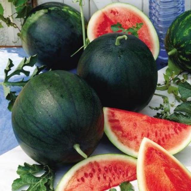 Семена арбуза Сахарный Малыш ( весовые от производителя)