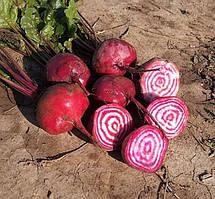 Семена столовой свеклы Борщевая