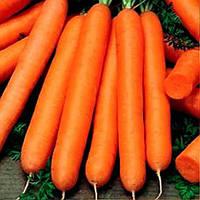 Семена моркови Тип-топ