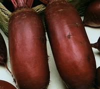 Семена столовой свеклы Титус