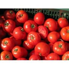 Насіння томату Бобкат