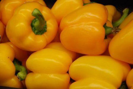 Семена перца Золотой юбилей