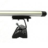 Amos Dromader C-15 Dynamik Багажник на дах у штатне місце (L:1,3 м), фото 1