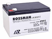 Аккумуляторная батарея Bossman 12v 12Ah