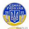 Серебряный значок-булавка Єдина Україна 31486
