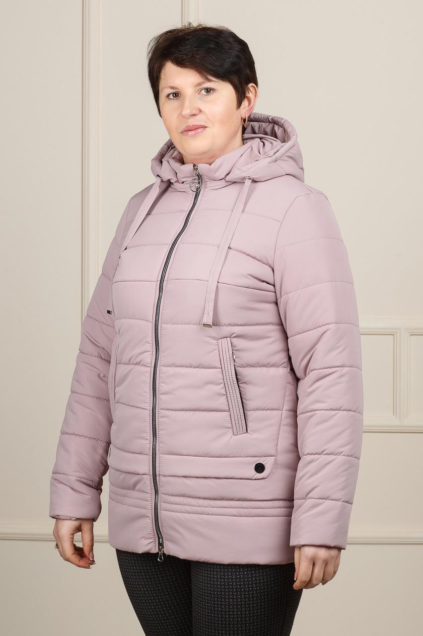 Женская демисезонная куртка Мирта пудра