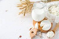 Экспорт сельскохозяйственной продукции, экспорт молочной продукции