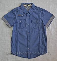 Детская рубашка для мальчика с коротким рукавом  р. 134 см, 146 см (Glo-Story, Венгрия)