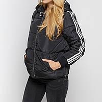 Куртка женская AL-8493-10