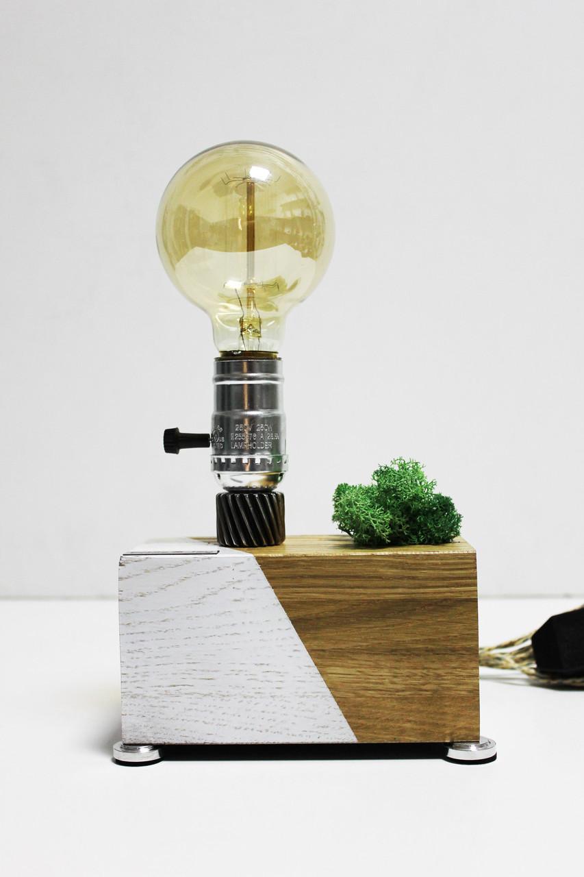 Настільна лампа Pride&Joy зі стабілізованим мохом