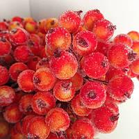 Цукрові ягоди калини Я-2