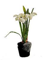 """Искусственный цветок """"Подснежник в земле"""" Coincasa 20х7х5см Белый, Зеленый, Черный"""