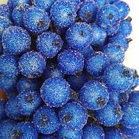 Цукрові ягоди калини Я-4