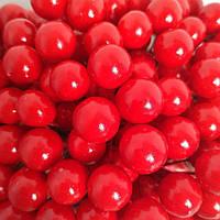Глянцеві ягоди калини Я-5