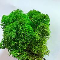 Стабилизированный ягель зеленый 500 грамм
