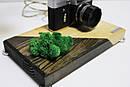 Настільна лампа Pride&Joy з вінтажним фотоаппаратом та мохом, фото 4