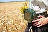 """Сумка """"Модель №57"""" Кожа Итальянский краст цвет Янтарь, фото 9"""