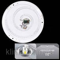 Biom (SML-R10-80) SMART Светильник 80W, фото 3