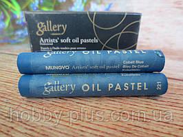 Пастель масляная мягкая MUNGYO, № 221, цвет на фото