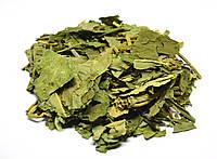 Вахта трехлистная трава (трифоль,трилистник водяной), фото 1